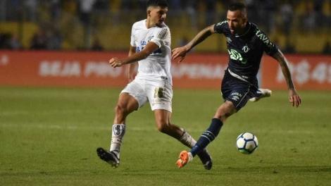 Na próxima rodada, o Santos tentará a recuperação diante do Flamengo, no Maracanã. (Ivan Storti/Santos FC)