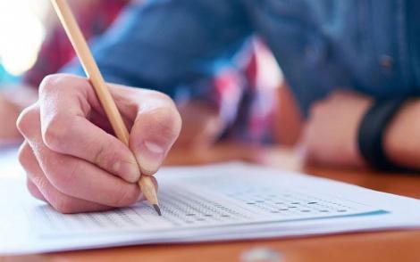 São oportunidades para diferentes áreas de atuação e níveis de escolaridade, desde o fundamental ao superior.