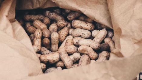 O alimento é rico em nutrientes e vitaminas (Radu Marcusu / Unsplash)